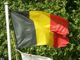 Vercruysse_Dominique_drapeau_belge.jpg