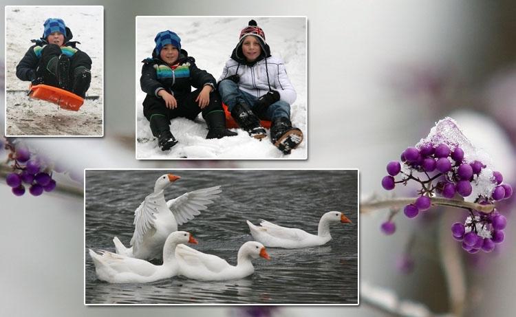 Stoyan_mouscron_neige.jpg